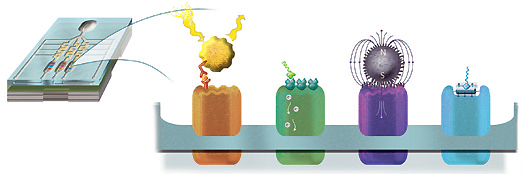 Representation of 4 types of nanosensor
