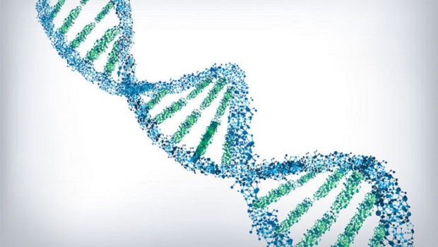DNA could store all of the World's Data in One Room
